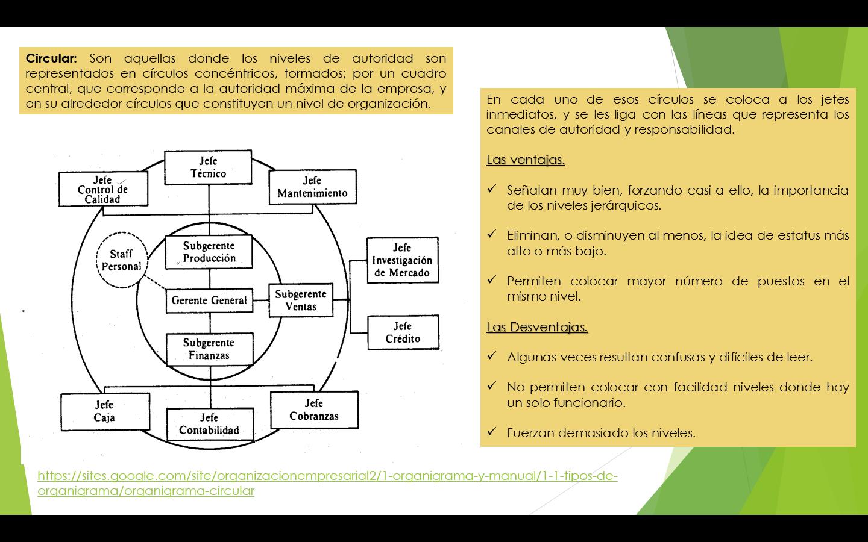 Organigrama Circular Organigrama Infografia Y Fundamentos