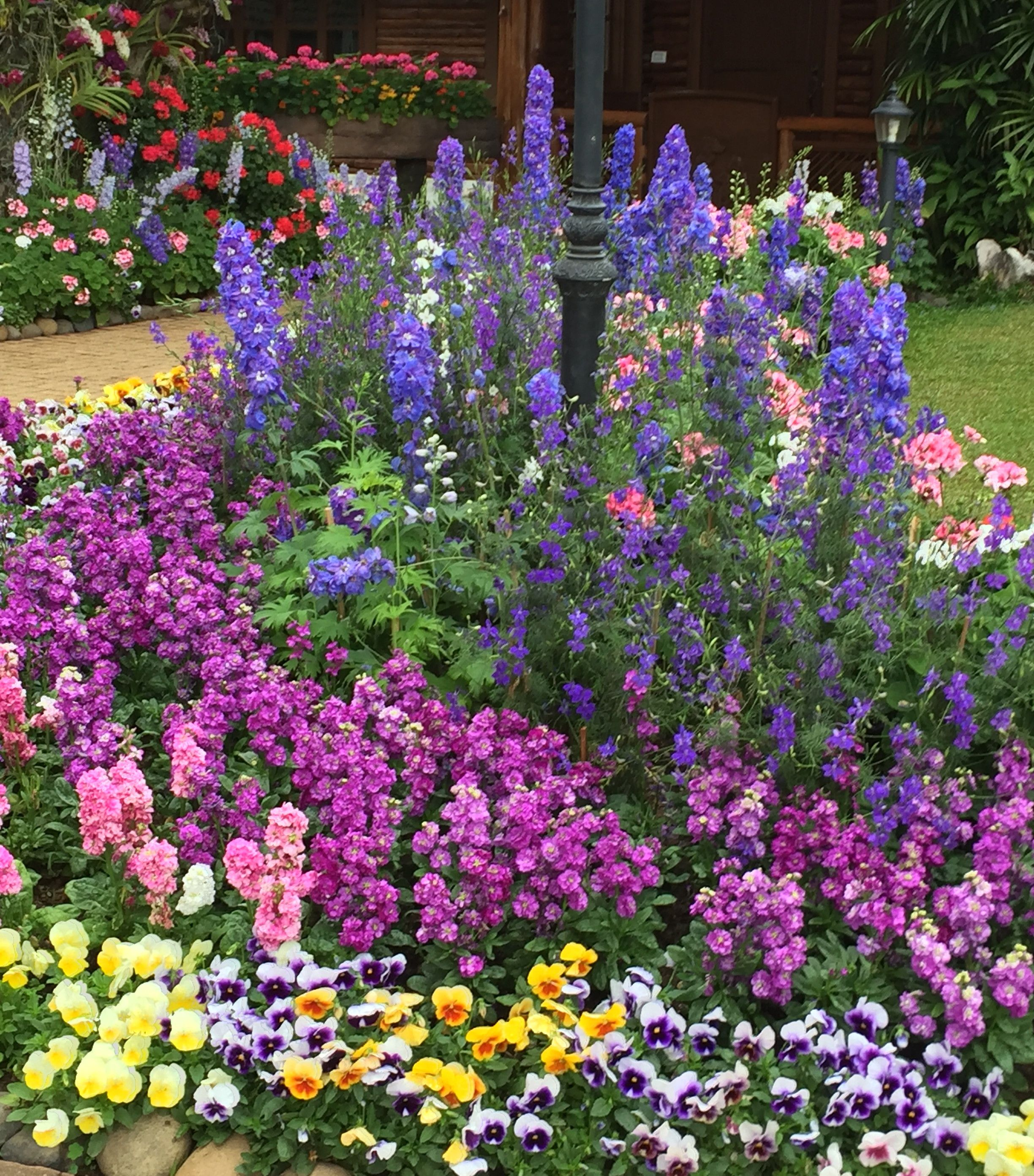 Journal   Garden Design, Montreal, Perennial Flower Gardens, Gardening  Tips, Gardening Advice