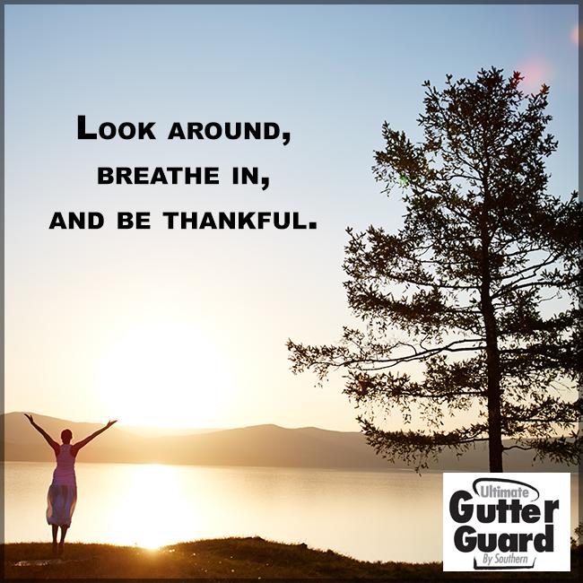 Gratitude Gutter Guard Window Siding Siding
