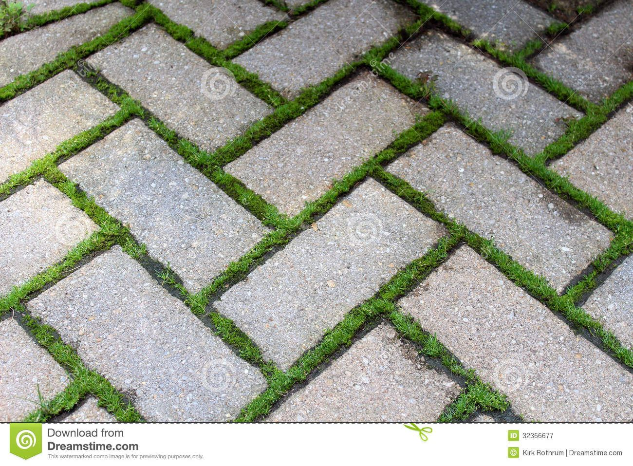 Brick pavers walkway and lush green grass stock photo for Green pavers