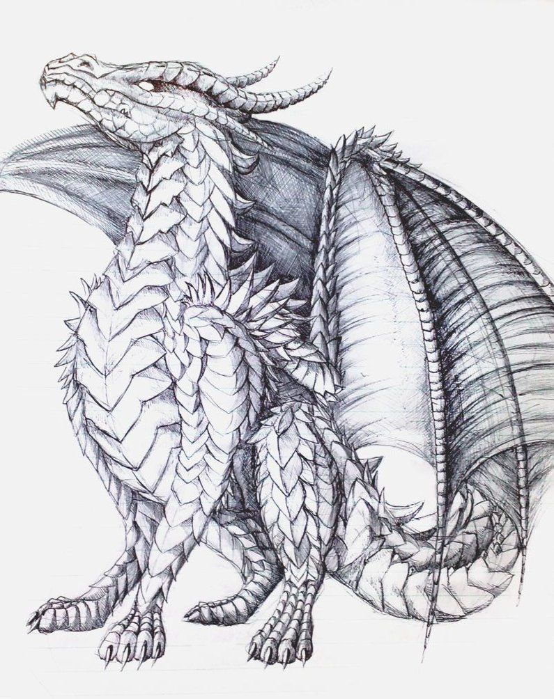 The Proud One Dragon Coloring Page Dragon Sketch Dragon Artwork