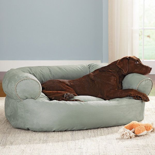 grandinroad sofa dog bed. $129 for the large. my lulu needs this.