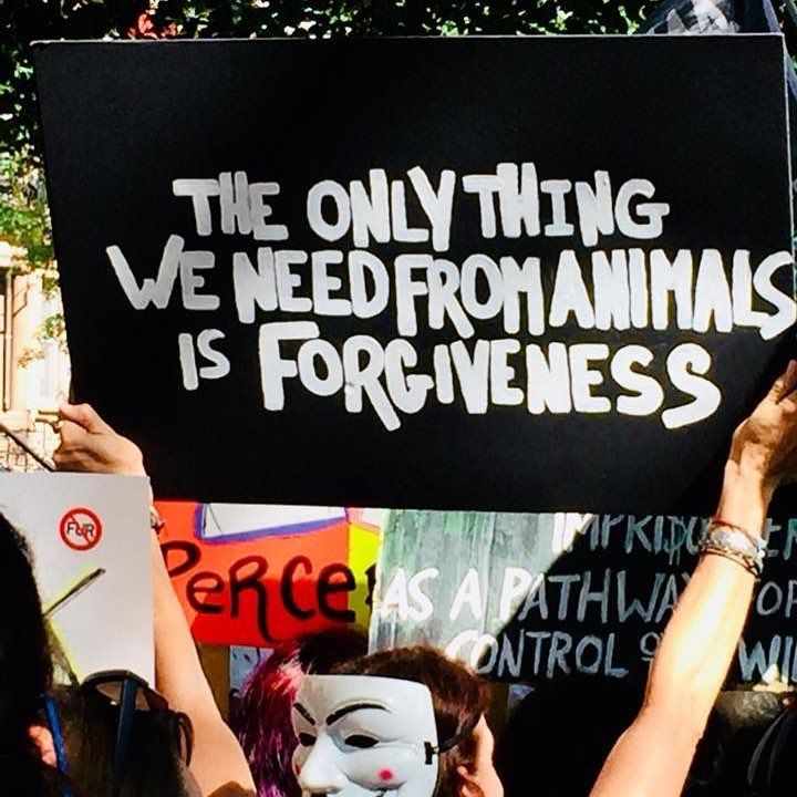 I Took This Photo At The Official Animal Rights March Nyc One Of The Best Signs In The March Anonymousforthevoiceless