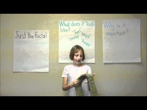 Expository Writing Lesson Quotgrab Bagquot Expository