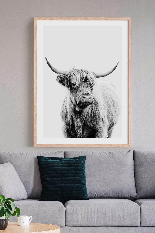 Black White Angus Highland Cow Wall Art Print In 2020 Highland Cow Print Cow Wall Art Cow Print