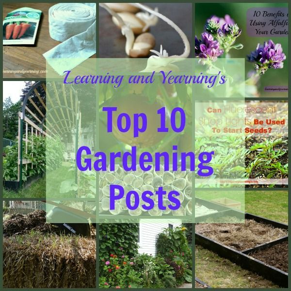 Learning And Yearning S Top 10 Gardening Posts Garden Natural