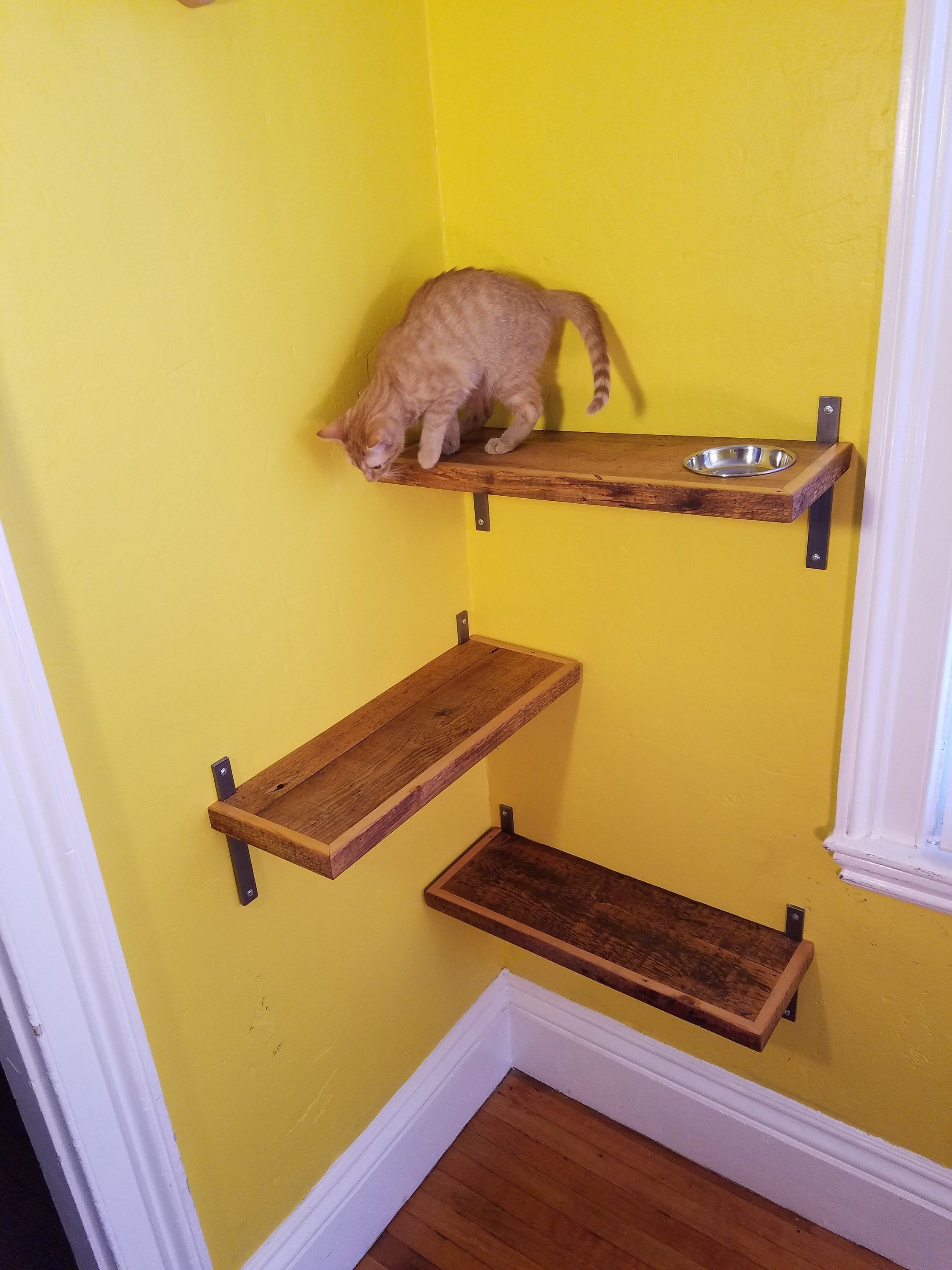 Reclaimed Wood Cat Shelf FREE SHIPPING Etsy in 2020