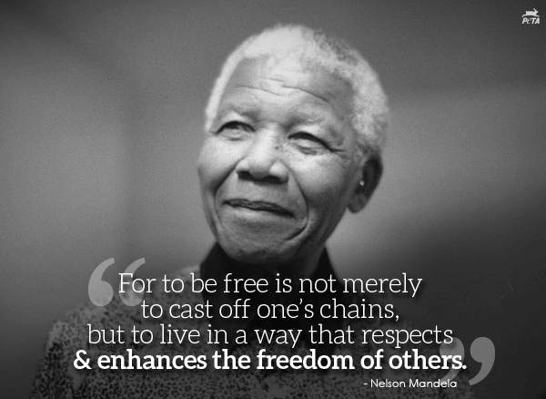 Nelson Mandela Quotes Delectable Nelsonmandelaquote 600×438  Quotes  Pinterest  Inspirational
