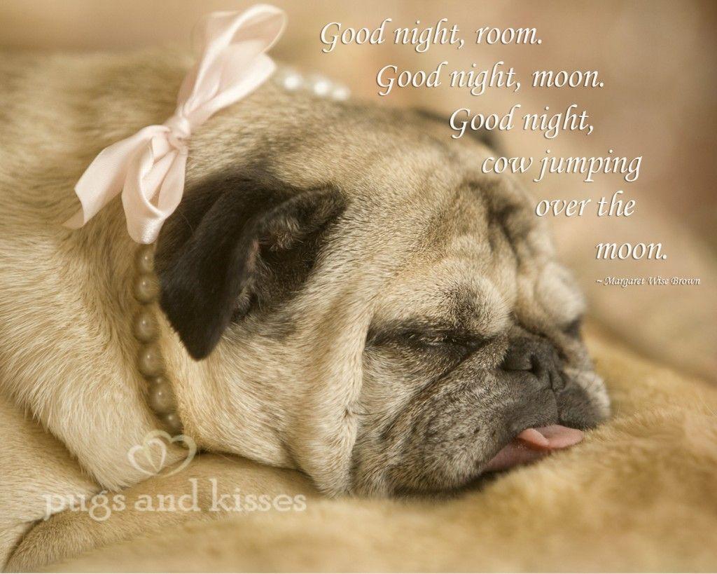Good Night Sweet Pug Pugs And Kisses Pugs Pug Love