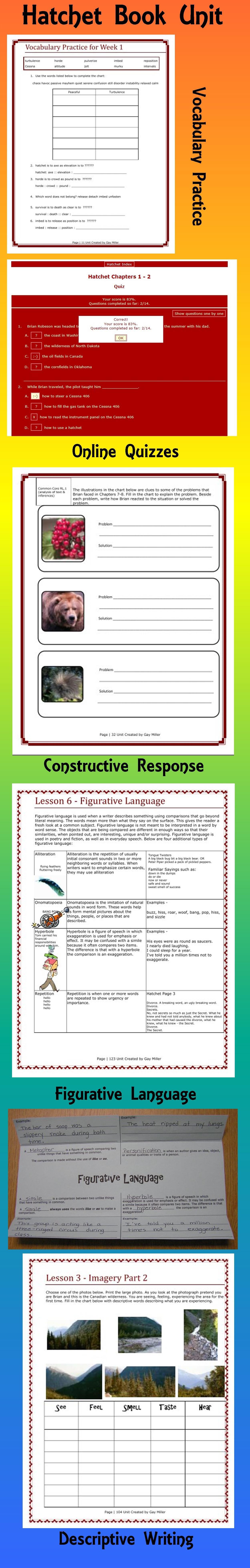 Hatchet Novel Study Digital Printable Book Unit Activities Amp Quizzes