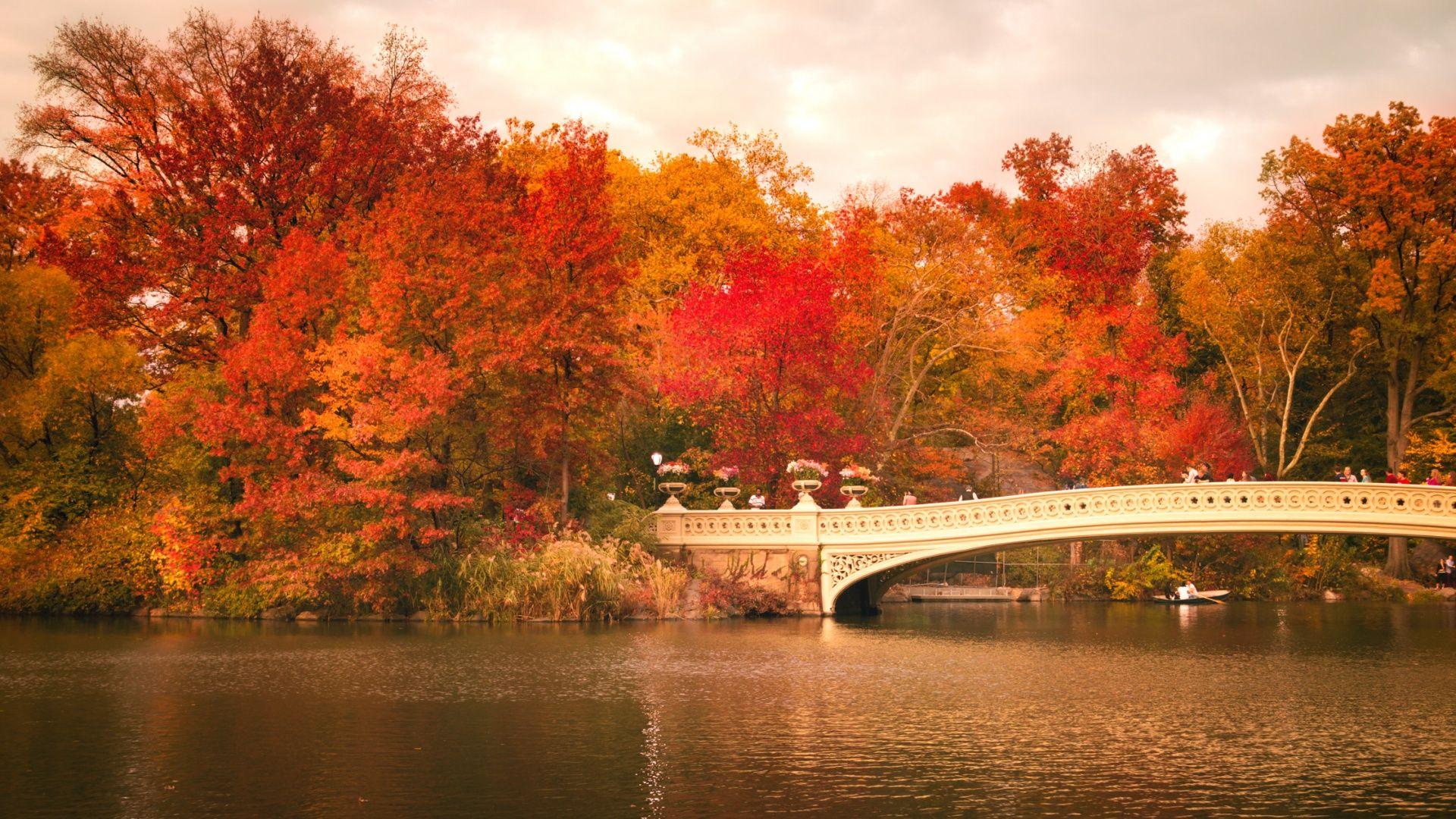 Обои Nyc, центральный парк, bow bridge. Города foto 15