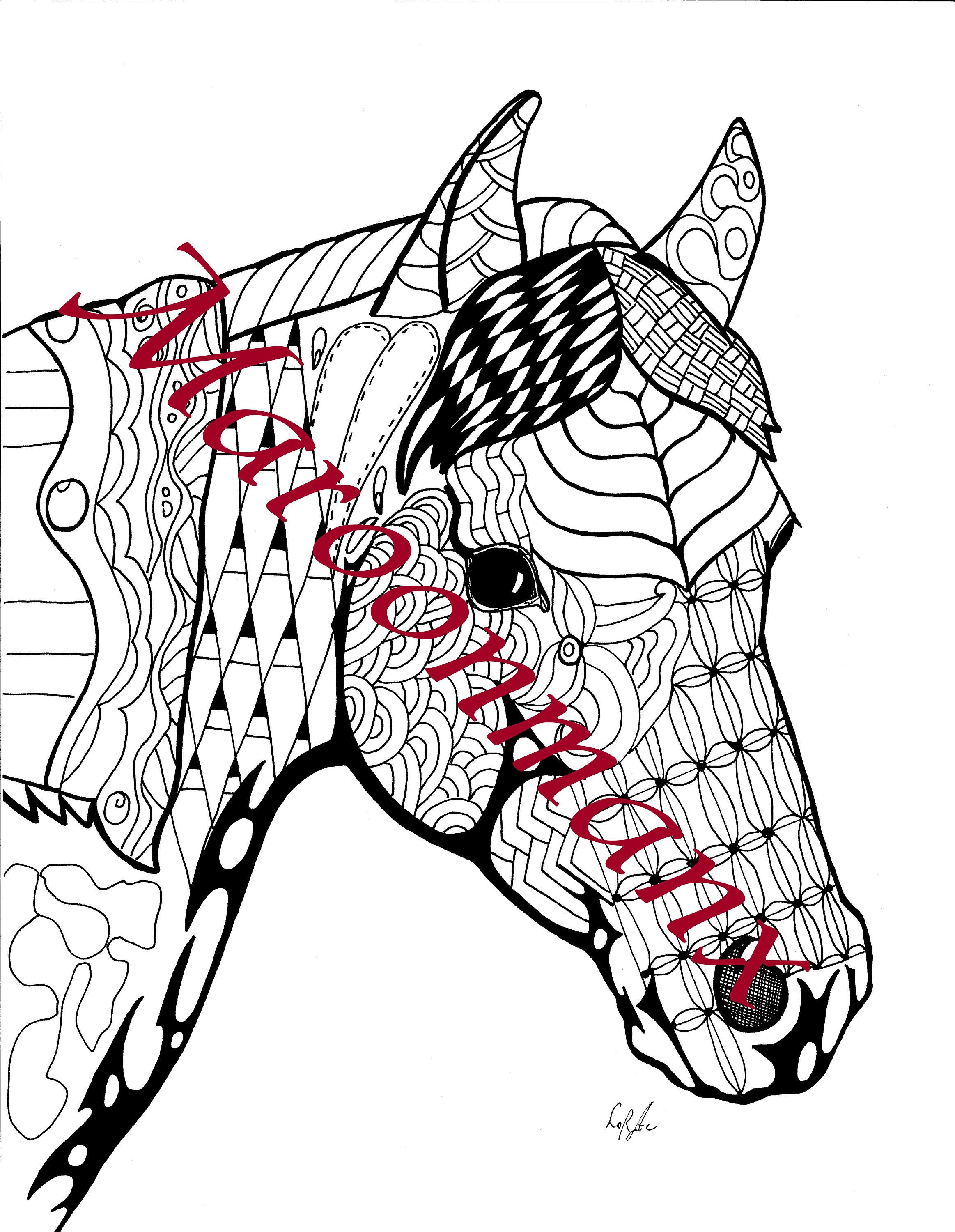 Dollar Deal Arabian Horse Coloring Page Animal Horse Doodle Art