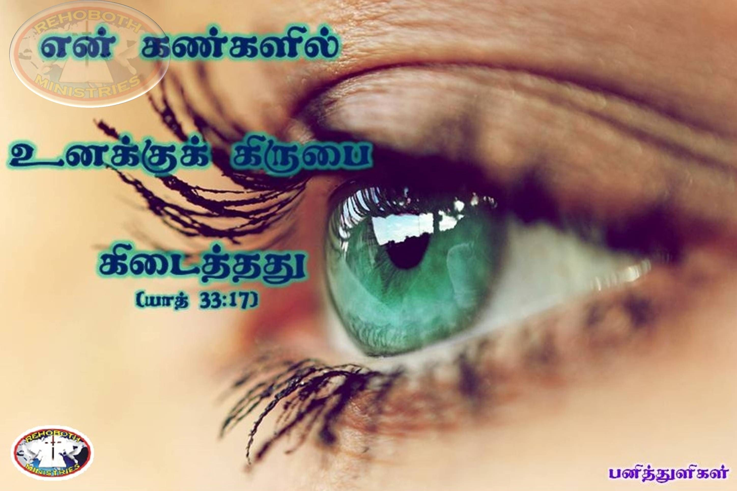 For Thou Hast Found Grace In My Sight Exodus 33 17 Bible Words Bible Quotes Tamil Bible