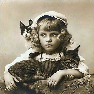 Possibly *not* the biggest fan of cats . . .