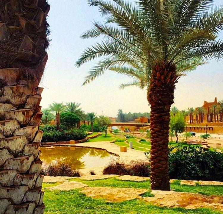 Beautiful Garden Riyadh