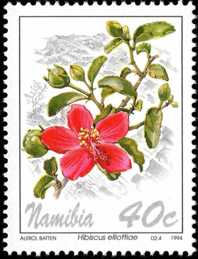 Stamp Hibiscus Elliottiae Namibia Flowers Mi Na 773 Sn Na 763 Yt Na 729 Flower Stamp Postal Stamps Hibiscus