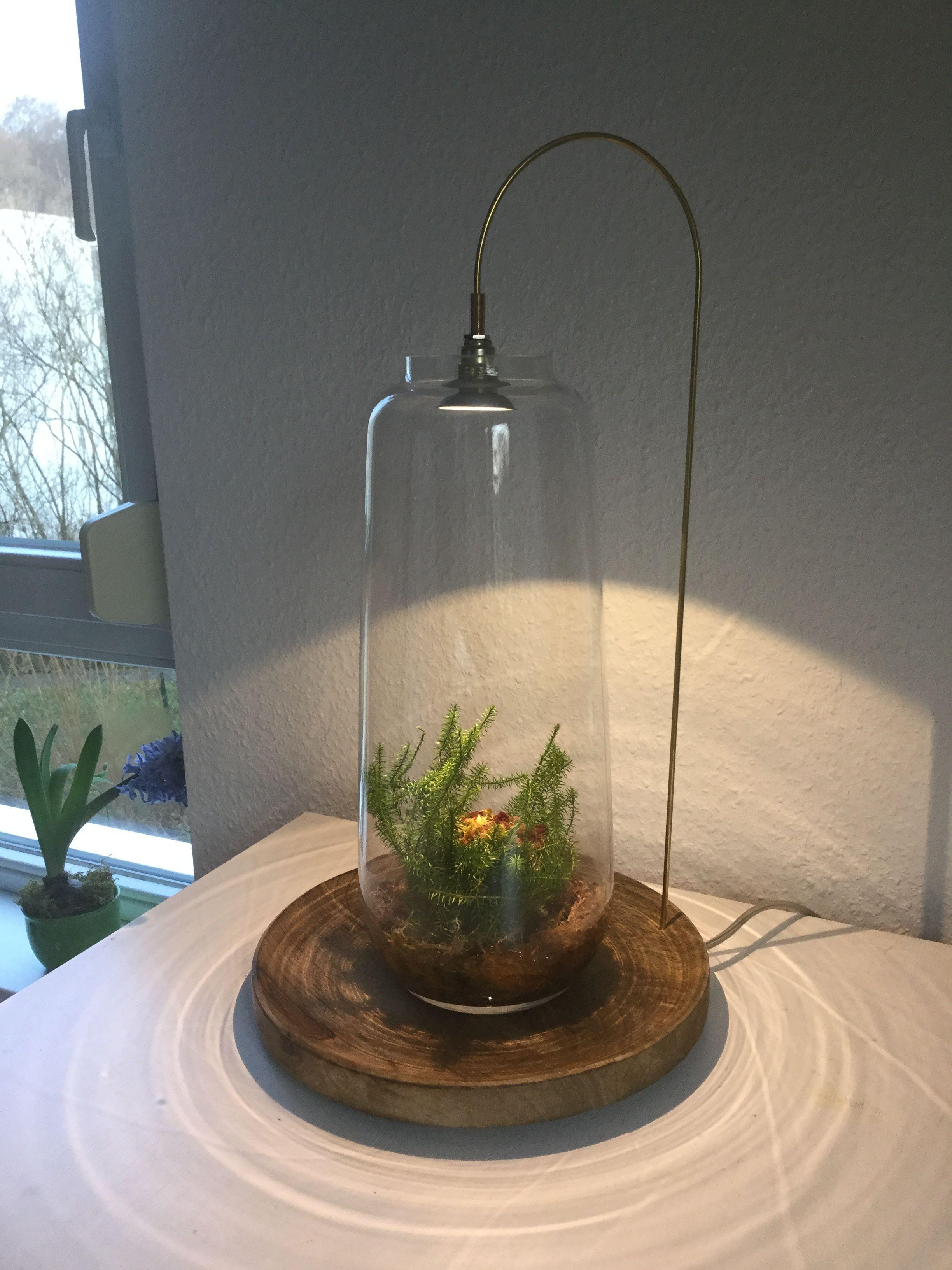 High-Power-LED mit Messingrohr und Bürstenmoos -DIY
