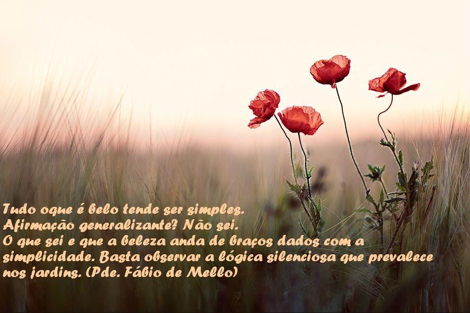 Padre Fábio de Mello