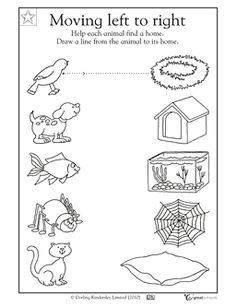 Animals And Their Habitats Worksheets Worksheets for all ...