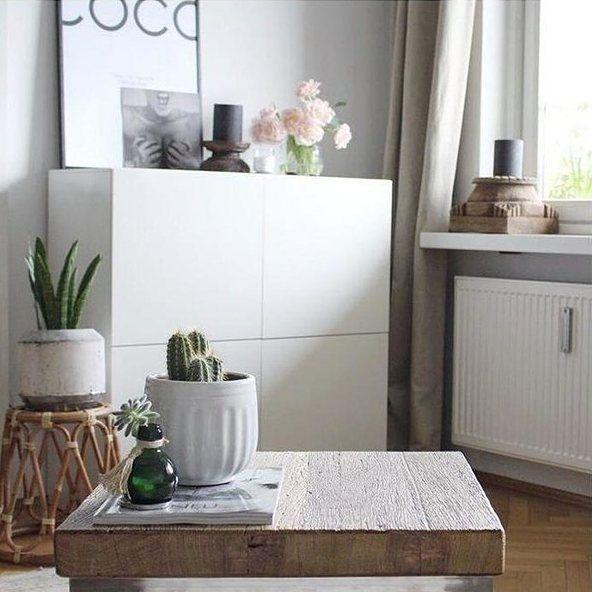 Egal ob Kaktus oder süße Pfingstrosen - Pflanzen geben Eurem Zuhause