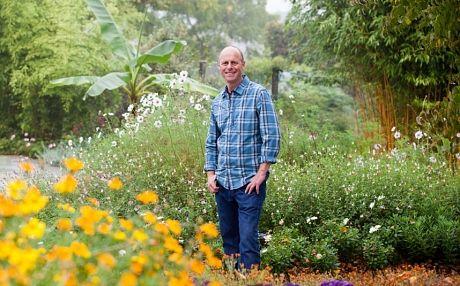 Gardening   Gardens, Planting and Garden ideas