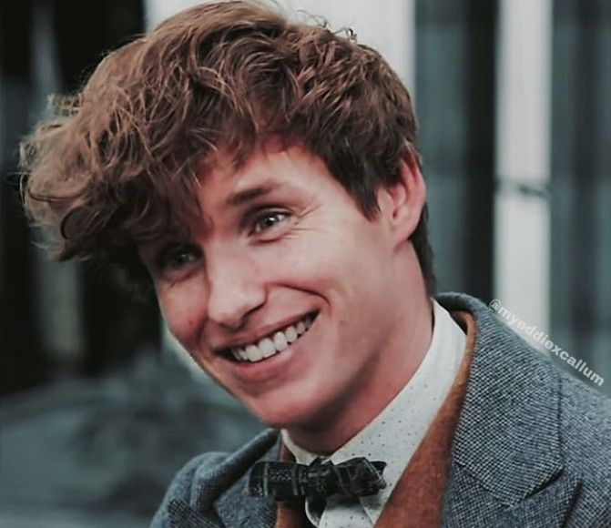 Pin By Amelie On Fantastic Beasts Franchise Eddie Redmayne Harry Potter Fantastic Beasts Harry Potter Icons