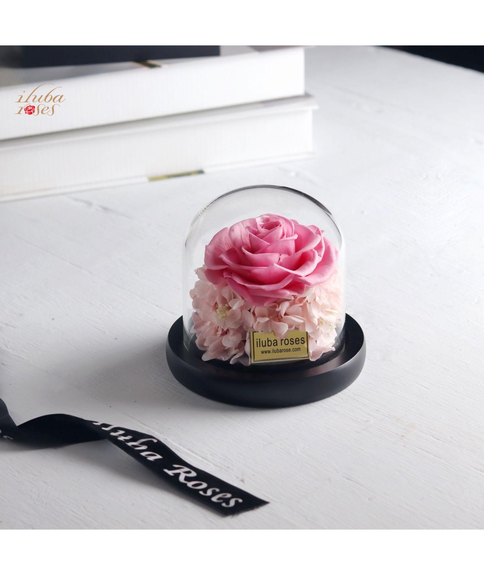 وردة ايلوبا روزز زهري دائمة داخل فازة زجاجية Crown Jewelry