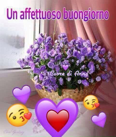 Un affettuoso buongiorno buon giorno good morning for Foto immagini buongiorno