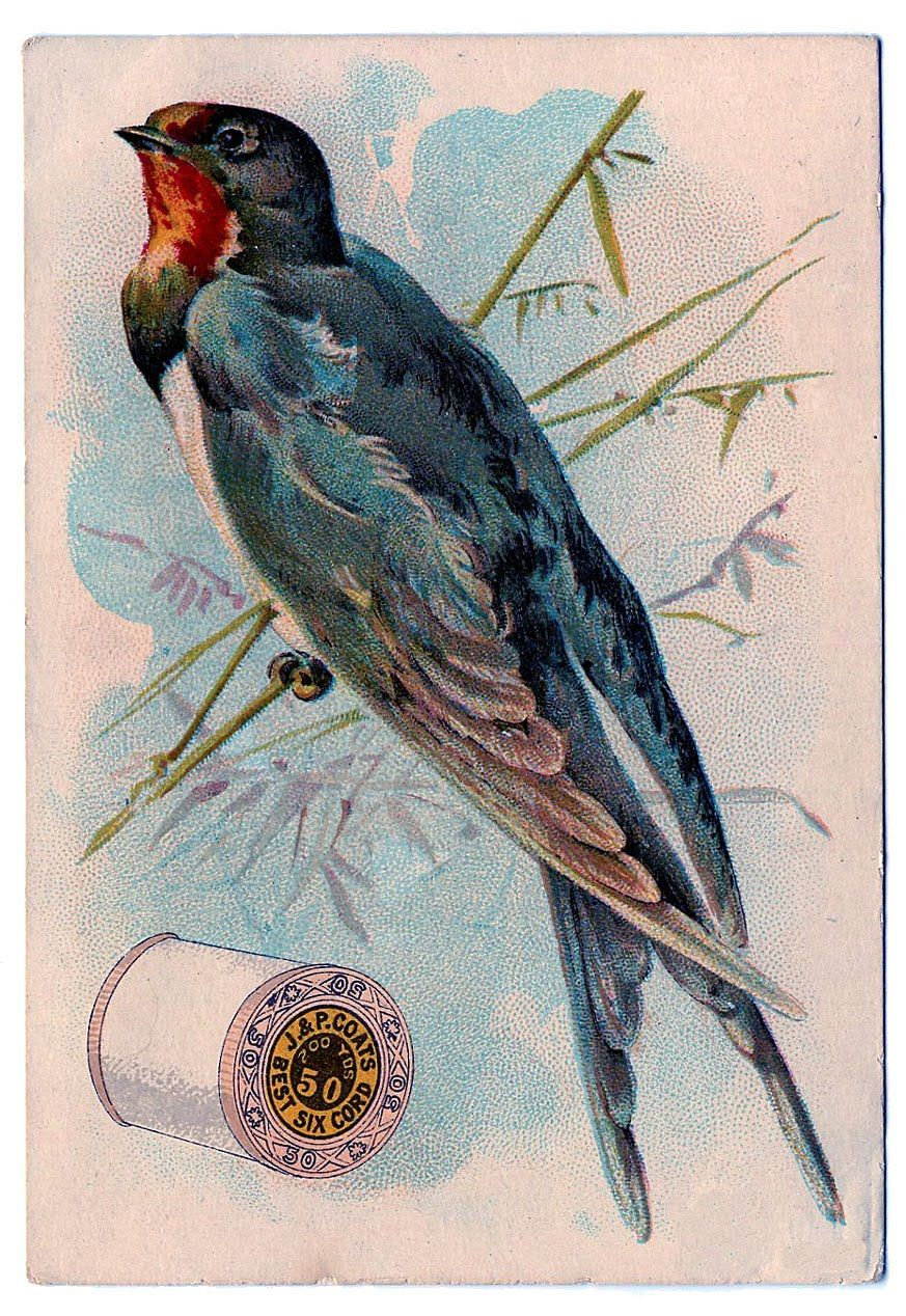 Vintage Sewing Clip Art - Swallow with Thread Spool | Needlework ...