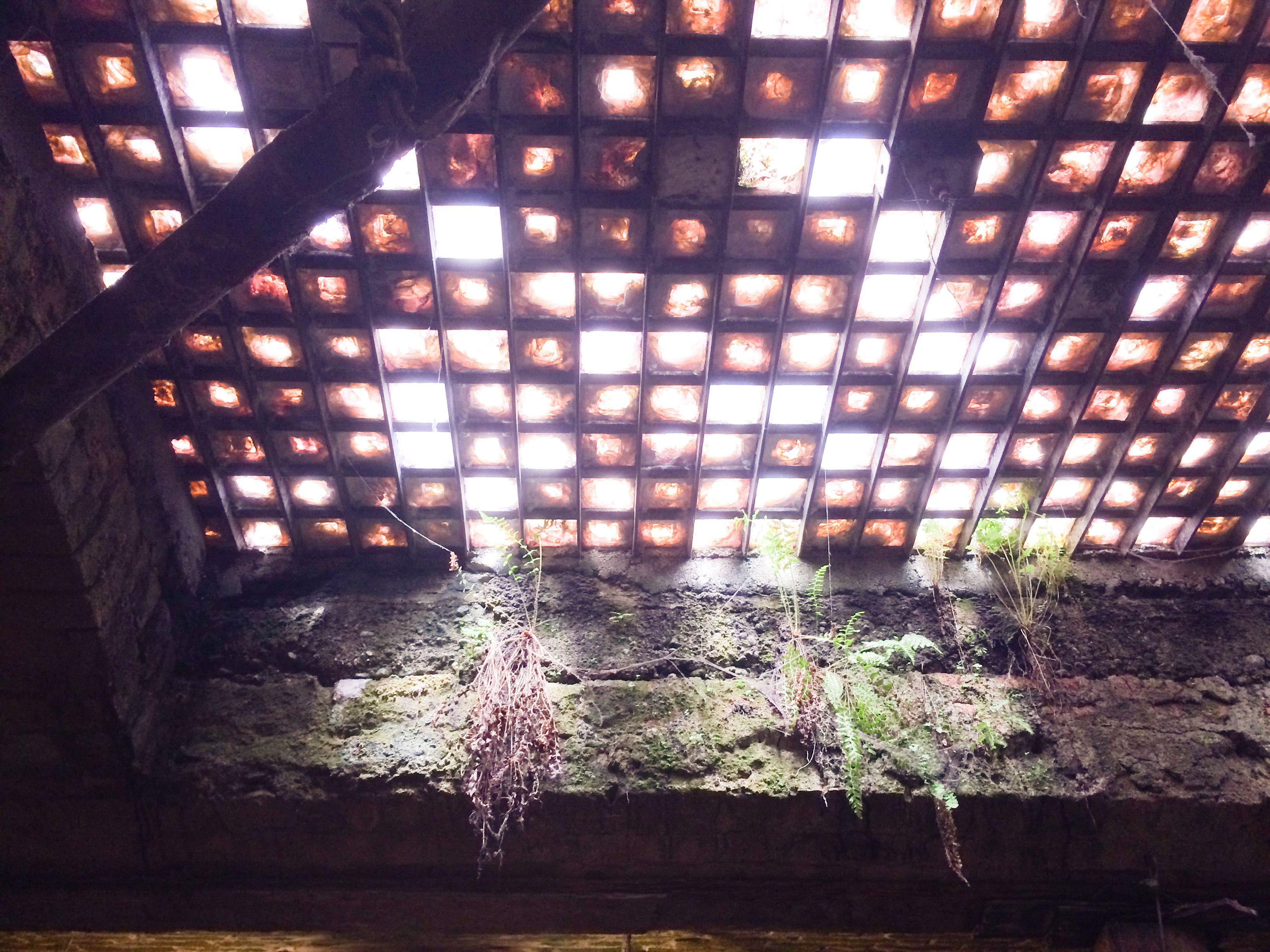 Seattle Part 3 Underground Tour and Saltyu0027s