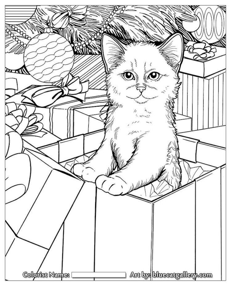 Cat In Christmas Present Box Coloring Page From Blue Cat Gallery Cat Coloring Book Cat Coloring Page Christmas Coloring Pages