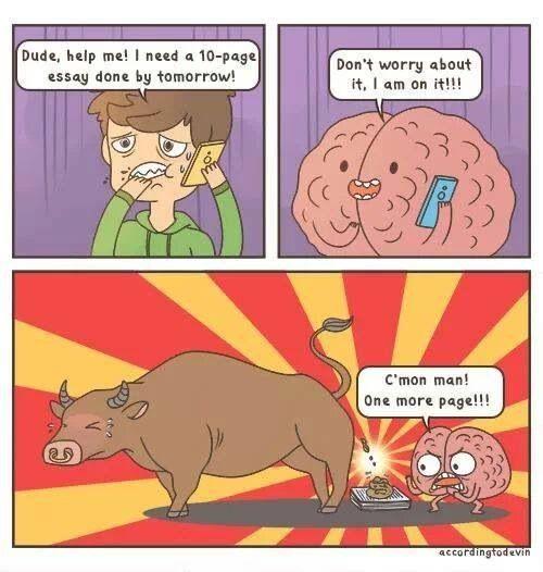 brain essay