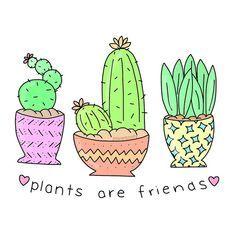 Resultado de imagen para imagenes de cactus y suculentas para dibujar