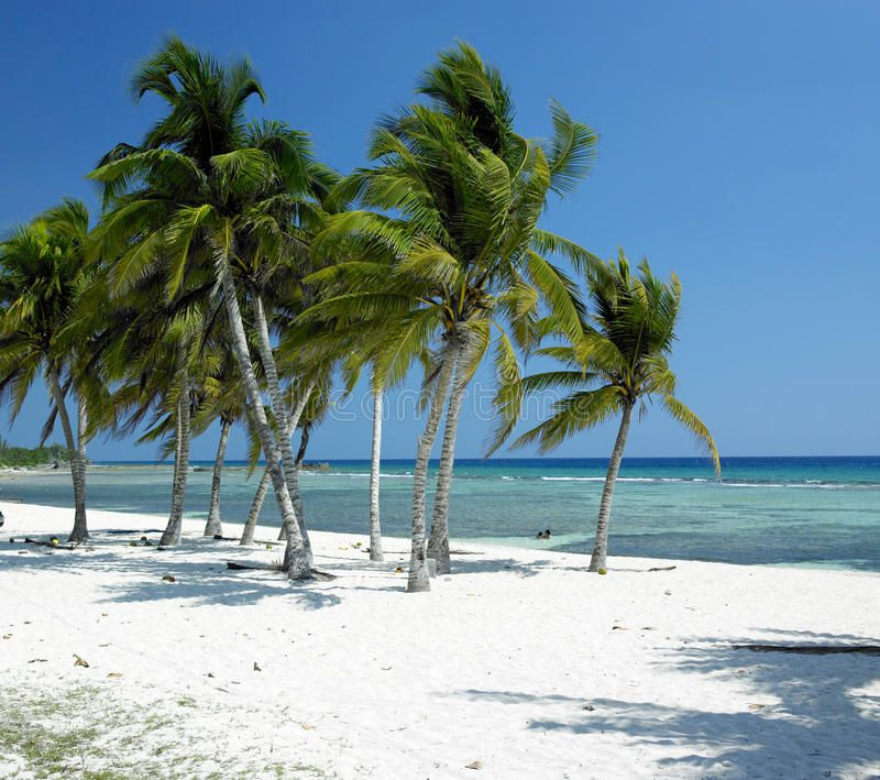 Cuba. Giron Beach at Caribbean Sea, Cuba , #AFFILIATE, #Giron, #Cuba, #Beach, #Sea, #Caribbean #ad #cubaisland