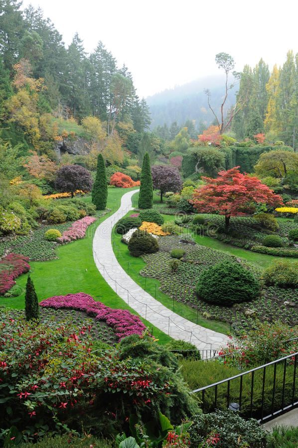 Garden in mist. Sunken garden in mist in the historic butchart gardens (over 100 , #affiliate, #historic, #butchart, #gardens, #garden, #Garden #ad #butchartgardens Garden in mist. Sunken garden in mist in the historic butchart gardens (over 100 , #affiliate, #historic, #butchart, #gardens, #garden, #Garden #ad #butchartgardens Garden in mist. Sunken garden in mist in the historic butchart gardens (over 100 , #affiliate, #historic, #butchart, #gardens, #garden, #Garden #ad #butchartgardens Garde #butchartgardens