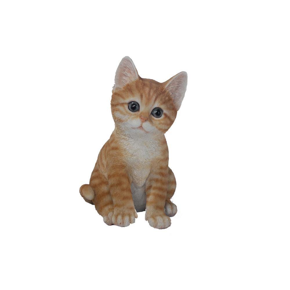 Hi Line Gift Orange Kitten Sitting Orange Kittens Cats Kittens