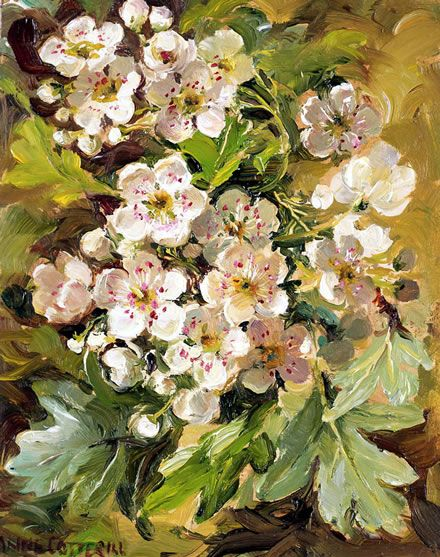 Hawthorn | Flower painting, Flower artists, Floral painting