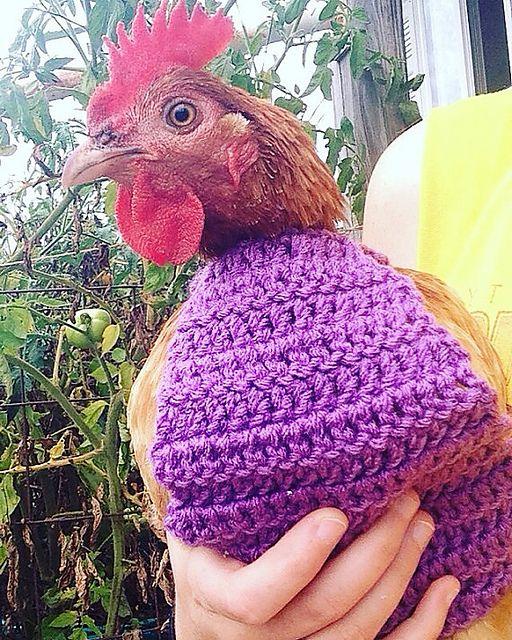 Ravelry: Crochet Chicken Sweater pattern by Creative Crochet by ...