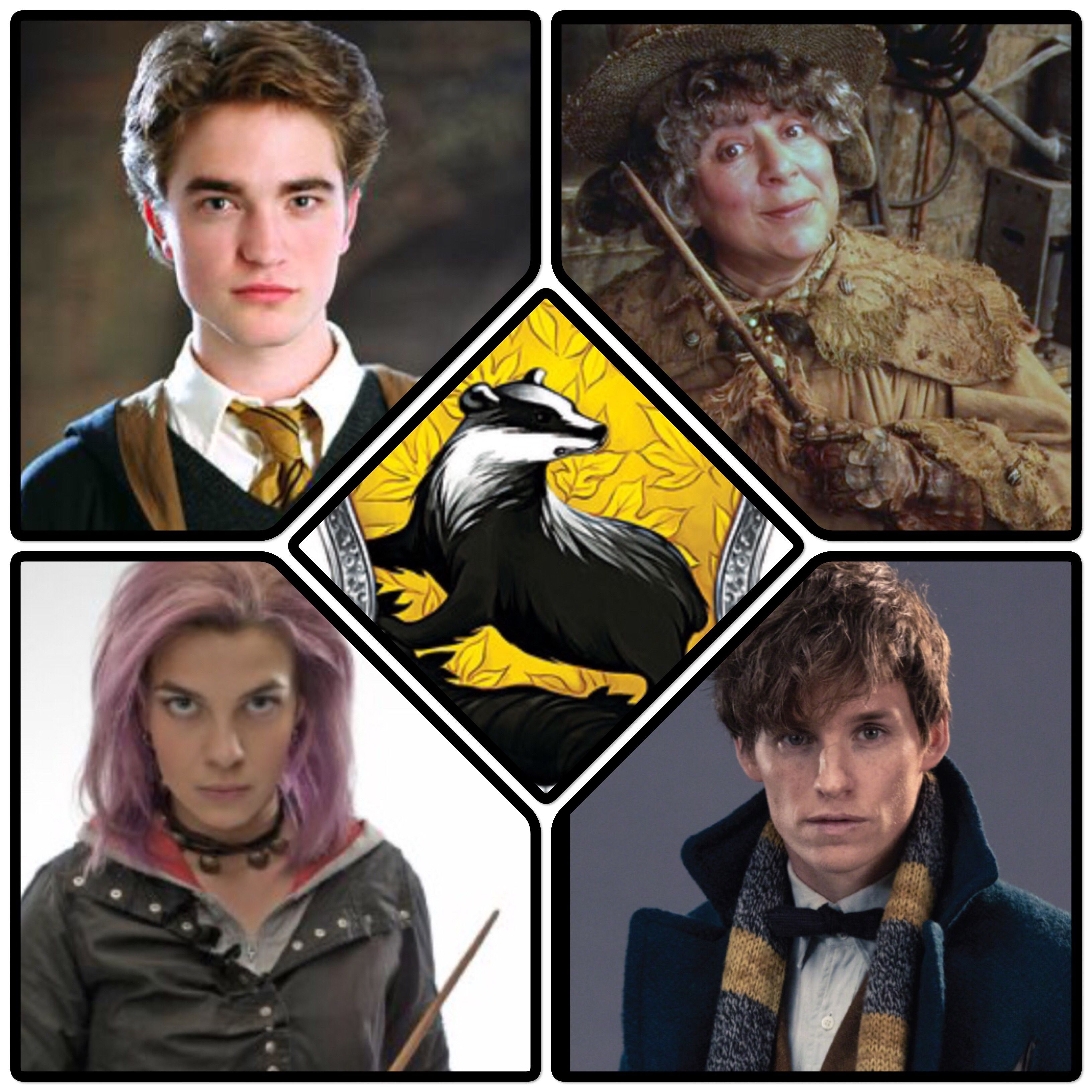 Awesome Hufflepuff Characters Harry Potter Background Harry Potter Images Harry Potter Pictures