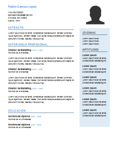 plantilla de curriculum funcional job resume template