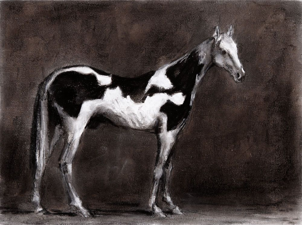 <b>Untitled (After George Stubbs)</b>, Pigmented Ultrachrome HDR ink-jet print on cotton paper (edition of 3+2AP), 97x129,5cm
