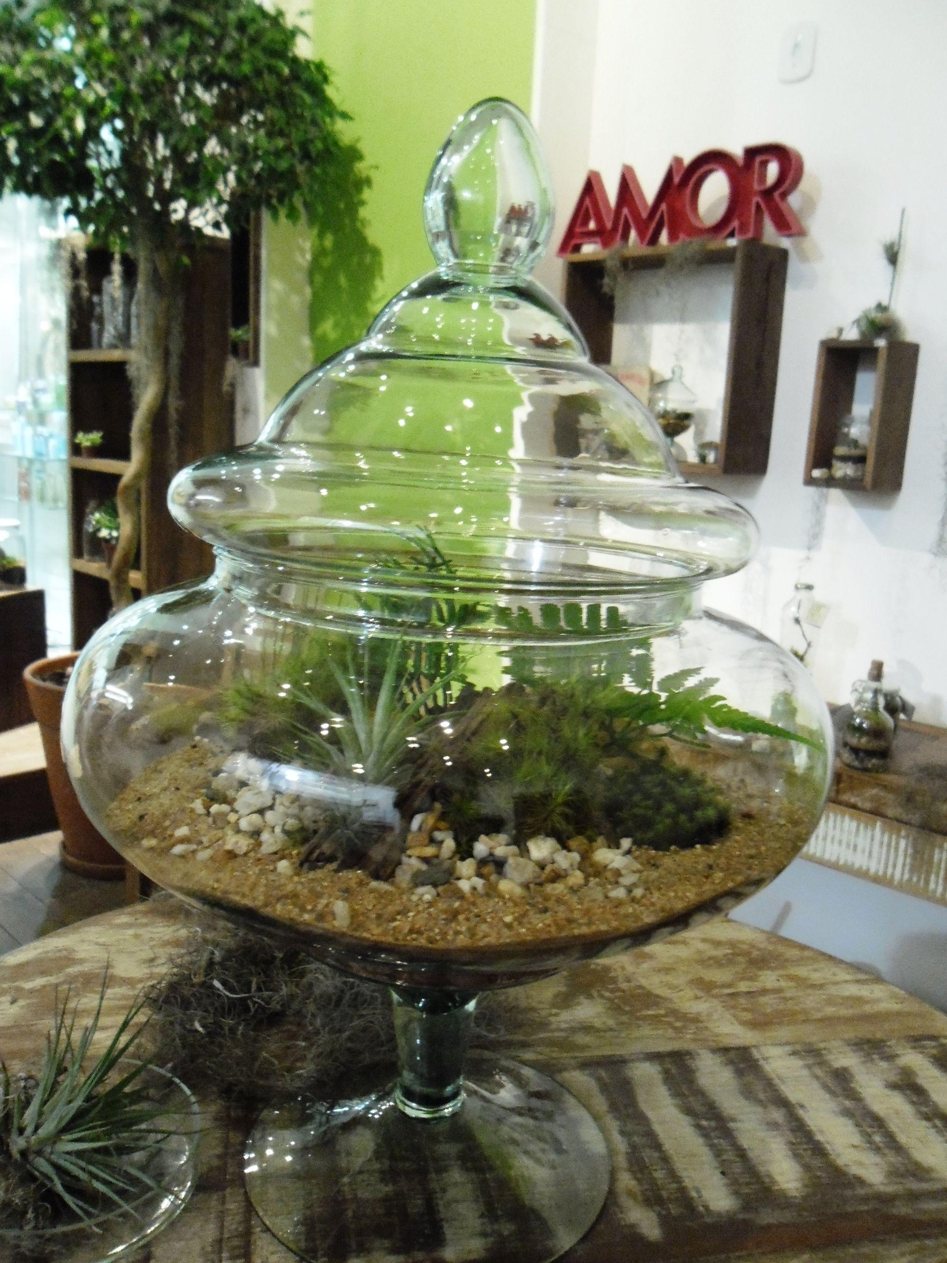 Terrário feito em vidro de decoraç u00e3o, by Jardim em Conserva Green! Pinterest -> Decoração De Vidros De Conserva Com Eva