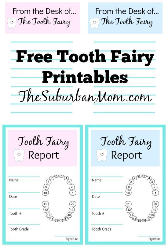 Tooth Fairy Ideas And Free Printables - Tooth Fairy Letter Tooth - make a receipt free