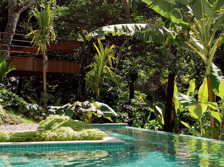 no Rio tem verdadeira floresta (preservada) no jardim