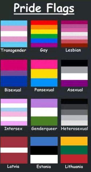 Sexual orientation flags tumblr
