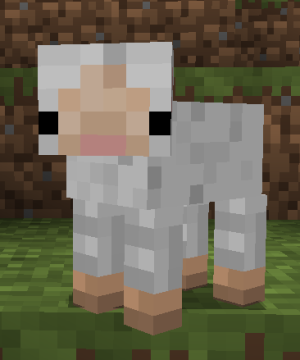 Its its a baby sheep! Lok at that face though | Baby ...