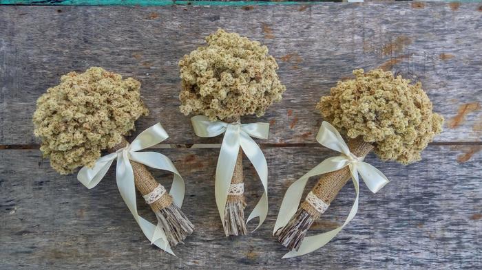Bunga Edelweis Bunga Abadi Tipe Buket Bunga Edelweis Mini