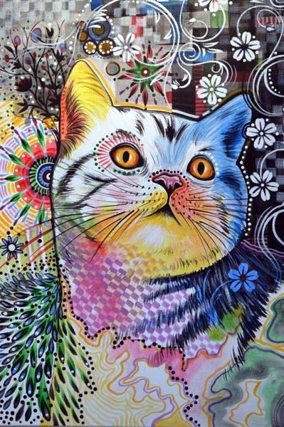 kittycatcat