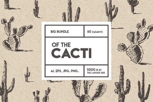 Photo of Big cacti bundle, sketch style by Bakani on Creative Market