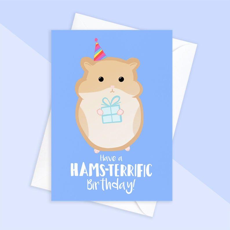 Hamster Birthday Card Card For Hamster Owner Hamster Mum Etsy